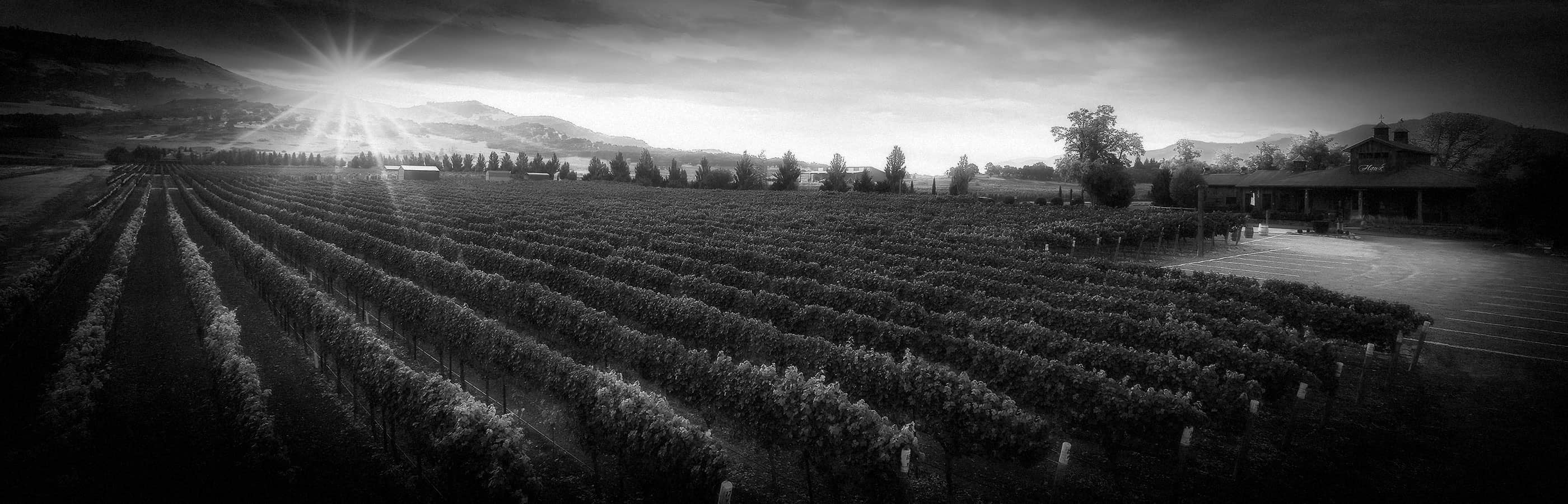 2Hawk Vineyard and Winery Building and Vineyard at Sunset (Grayscale)