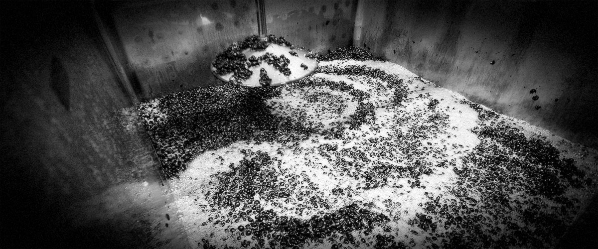 2Hawk Vineyard and Winery Crush Pad (Grayscale)
