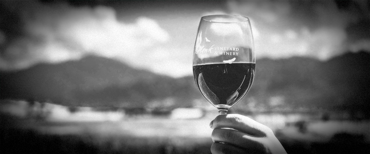 Holding 2Hawk Vineyard and Winery Wine Glass up Against Blue Sky (Grayscale)